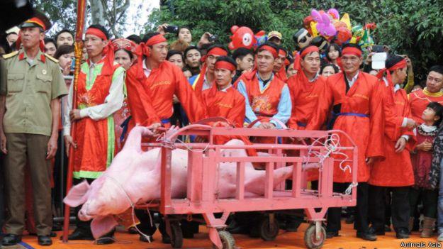Ném Thượng có lễ hội chém lợn