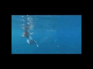 Ị dưới biển (Ảnh: Internet)