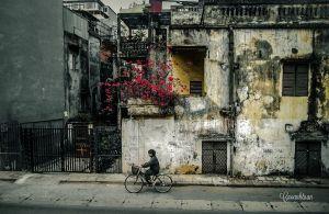 Mùa Đông Hà Nội - Ảnh: Cao Anh Tuấn